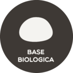 Freesco Gusto - L'Officina dell'Impasto - Icona Base Pizza Classica Biologica